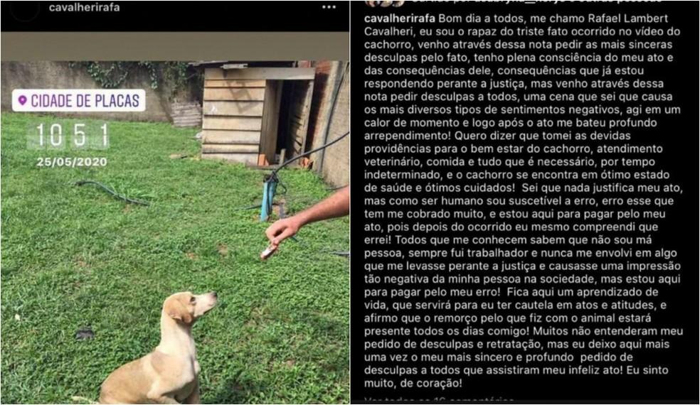 Homem que arremessou cachorro por cima de muro no Pará pede desculpas: 'calor do momento'