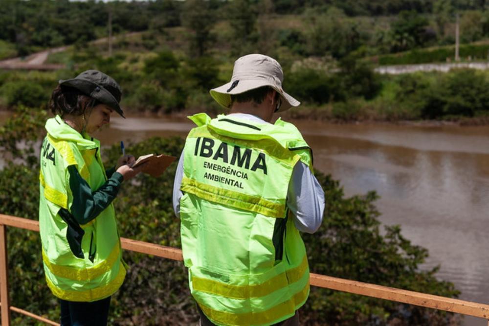 Ibama pode contratar 1.481 trabalhadores temporários